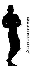 culturiste, silhouette