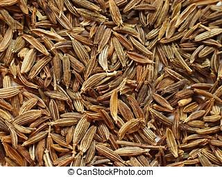 Cumin - Layer of dry cumin seeds.