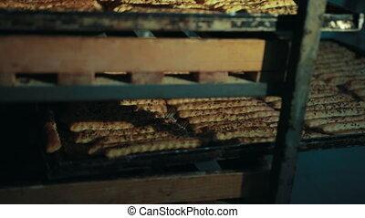 cumin, mensonges, crispbead, cumin, oven-tray., rangées, ...