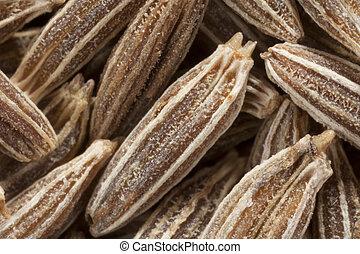 Cumin Seeds Macro - Macro shot of dried cumin seed.