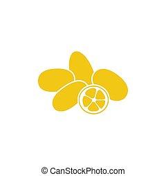 cumquat, isolato, su, fetta, fondo, chiudere, bianco, kumquat, o