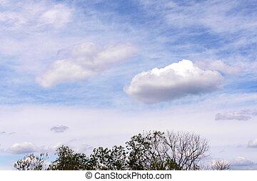 Cumulonimbus clouds. Cirrus clouds in the sky background, texture.