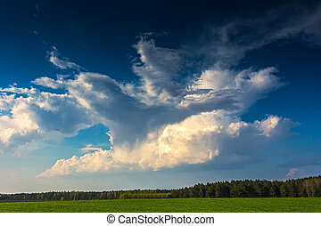 Cumulus clouds running across brilliant blue sky