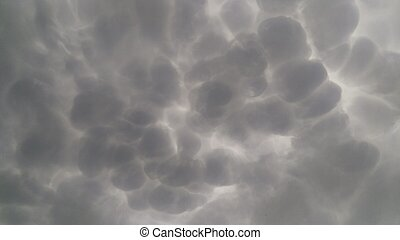 Cumulus is a fluffy cloud like a cotton ball. Rounded shoots like cauliflower.