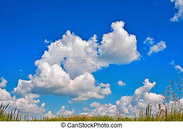 cumulus, sobre, nuvens, prado