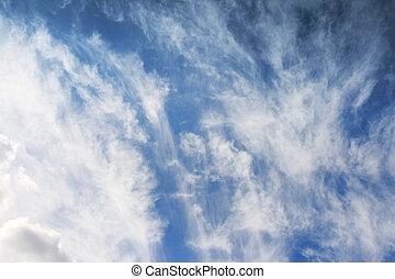 cumulus - white fluffy clouds in the blue sky