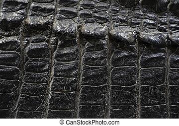 cuoio nero, fondo, struttura