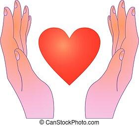 cuore, disegno, mani