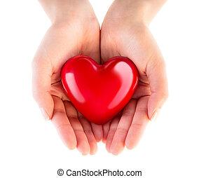 cuore, donazione, -, amore, mani