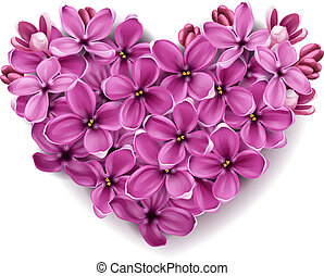 cuore, fiori, lilac.