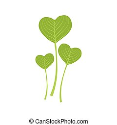 cuore, forma, foglie, illustrazione, vettore, verde