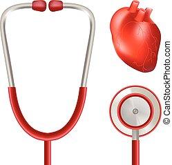 cuore, illustration., realistico, isolato, fondo., vettore, salute, stetoscopio, bianco