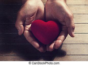 cuore, in, il, mani