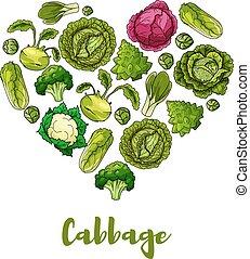 cuore, manifesto, forma, vettore, verdura, cavolo