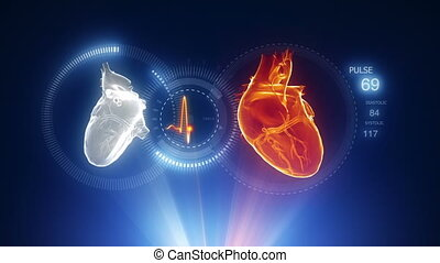 cuore, raggi x, scansione, blu, proiezione