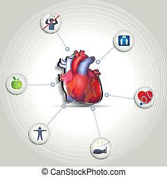 cuore sano, punte, cura