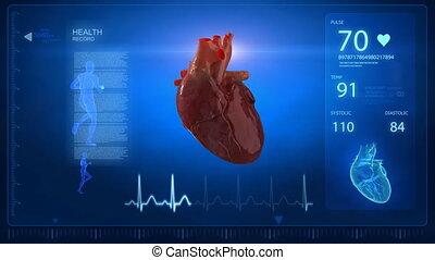 cuore umano, con, traccia impulso, monito