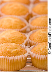 Cup Cakes on a cooling rack