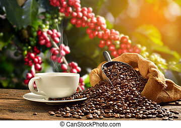 Cup of coffee with smoke and coffee beans in burlap sack on coffee tree background