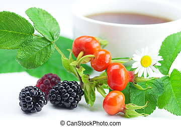 cup of tea, blackberry, raspberry, chamomile and rosehip berries with leaves on white background