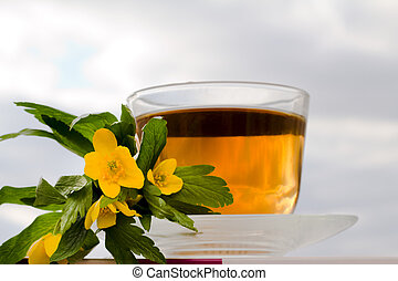 Cup of toning up tea 2