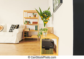Cupboard in living room
