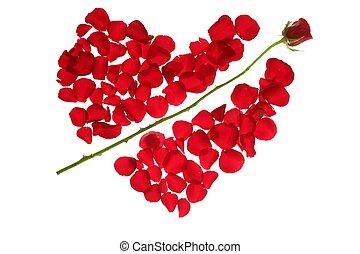 Cupid arrow in a red rose petals heart shape