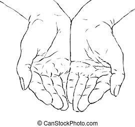 hands - cupped hands