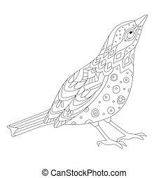 curieux, coloration, ton, page, oiseau