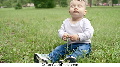 Curious Baby Boy - Adorable baby boy sitting on grass and...