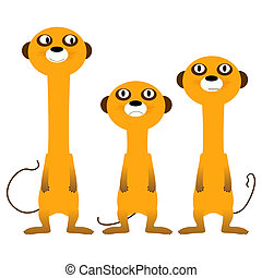 Curious meerkats, isolated and grouped objects over white...