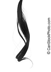 curl of black hair isolated on white background