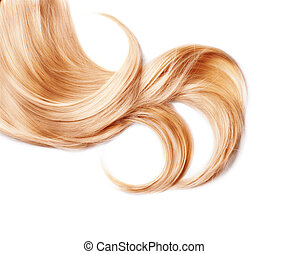 Curl of healthy blond hair isolated on white