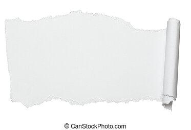 curled, бумага, свиток, белый, crumpled, заметка