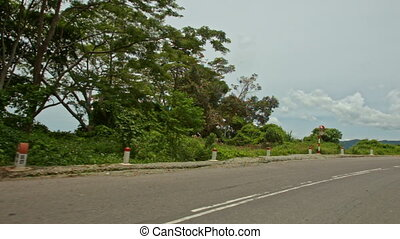 Curly Mountain Asphalt Road by Plants with Barriers - camera...