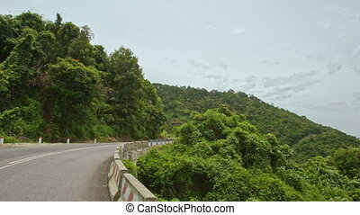 Curly Mountainous Asphalt Road between Forestry Hills -...