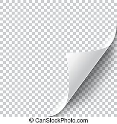 Curly Page Corner realistic illustration with transparent...