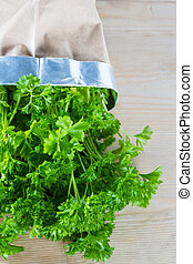 Curly parsley plant