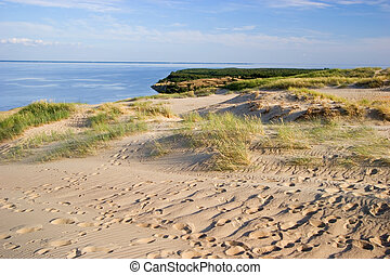 curonian, λιμνοθάλασσα