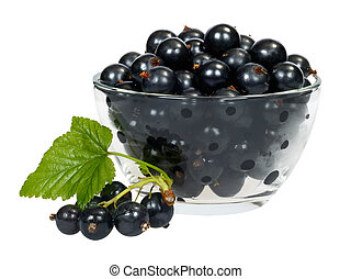 currant berries in a cup of glass