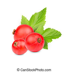 Currant - Photo of red currant with leaf isolated on white