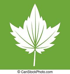 Currant tree leaf icon green