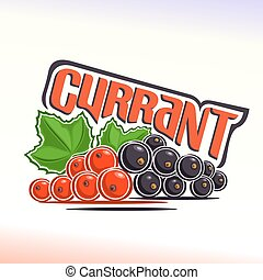 Currant - Vector illustration on the theme of the logo for...