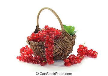fresh red currants in a basket on white background