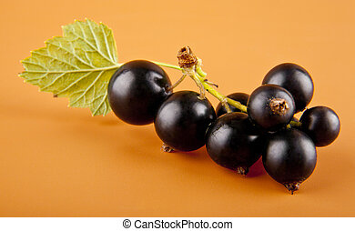 currants on brown background