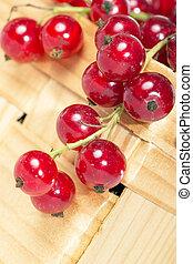 Currants - red currants