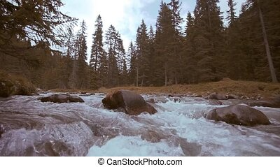 Current of a stream of water in the foreground flows among the boulders in the forest of the mountains