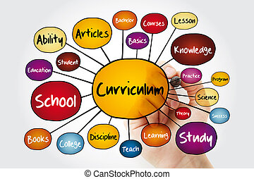 Curriculum mind map flowchart with marker, education concept...