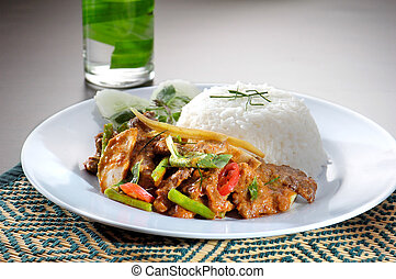 Curry Chicken with rice malaysia food