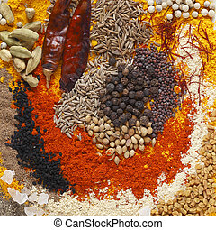 Curry spices - Asian curry spices, in the centre black...